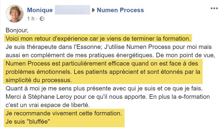 Témoignage par email de la formation Numen Process: Monique thérapeute
